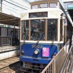 都電荒川線の愛称が「東京さくらトラム」に決定したので、都電と桜を一緒に撮影できるスポットを紹介します #地域ブログ #桜
