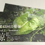 平成29年(2017年)9月2日(土)から9月10日(日)まで文京区千駄木にあるぎゃらりーKnulpにて「涼 -Summer-」展が開催 とくとみ撮影の写真が展示されます! #地域ブログ