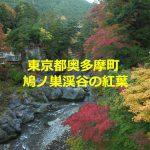 東京都奥多摩町の鳩ノ巣渓谷は秋の紅葉シーズンに散策するのがベスト! #tokyoreporter #tamashima #tokyo #okutama