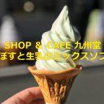 文京区千駄木にオープンした「SHOP & CAFE 九州堂」でかぼす感がたっぷりあるかぼすと生乳のミックスソフトクリームを食べてみた! #地域ブログ
