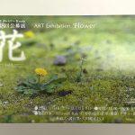 平成29年(2017年)11月4日(土)から11月12日(日)まで文京区千駄木にあるぎゃらりーKnulpにて「花 -vol.2-」展が開催 とくとみ撮影の写真が展示されます! #地域ブログ