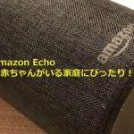 Amazon Echoは赤ちゃんがいる家庭にぴったり!両手が塞がっていても声で命令を出せるのが最高に便利!  #育児