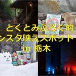とくとみぶろぐ的インスタ映えスポット(?)6選 in 栃木