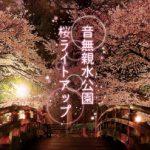 東京都北区の王子にある音無親水公園にて2018年3月20日(火)から4月15日(日)まで桜のライトアップイベントが開催 インスタグラムでのフォトコンテストもありますよ