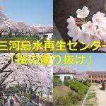 東京都荒川区にある三河島水再生センターの「桜の通り抜け」イベントレポート 赤レンガの建物群と桜のコラボが最高だった! #地域ブログ #荒川区 #Locketsリレー2018春