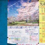 平成30年(2018年)4月7日(土)に東京都荒川区にある尾久の原公園で「第15回尾久の原公園シダレザクラ祭り」が開催 #地域ブログ #荒川区