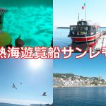 熱海遊覧船サンレモの魅力を写真いっぱいで紹介します!魚、鳥、山、海、そして街の眺めが最高ですよ
