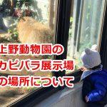上野動物園のカピバラ展示場の場所を解説します