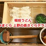 上野の森さくらテラス内あるかまくらにて稲庭うどんをランチで食べてきた