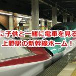 真夏にこそ電車好きな子供を連れていきたいのは上野駅の新幹線ホーム! #育児