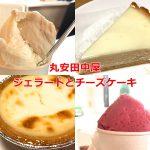 長野県諏訪市にある丸安田中屋のお手頃価格でしかも美味しいジェラートとチーズケーキ #諏訪の国公式アンバサダー